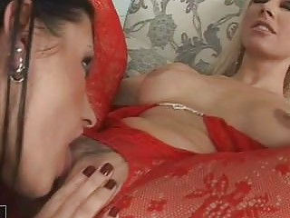 Two gorgeous lezzies in lace stockings having hot sex